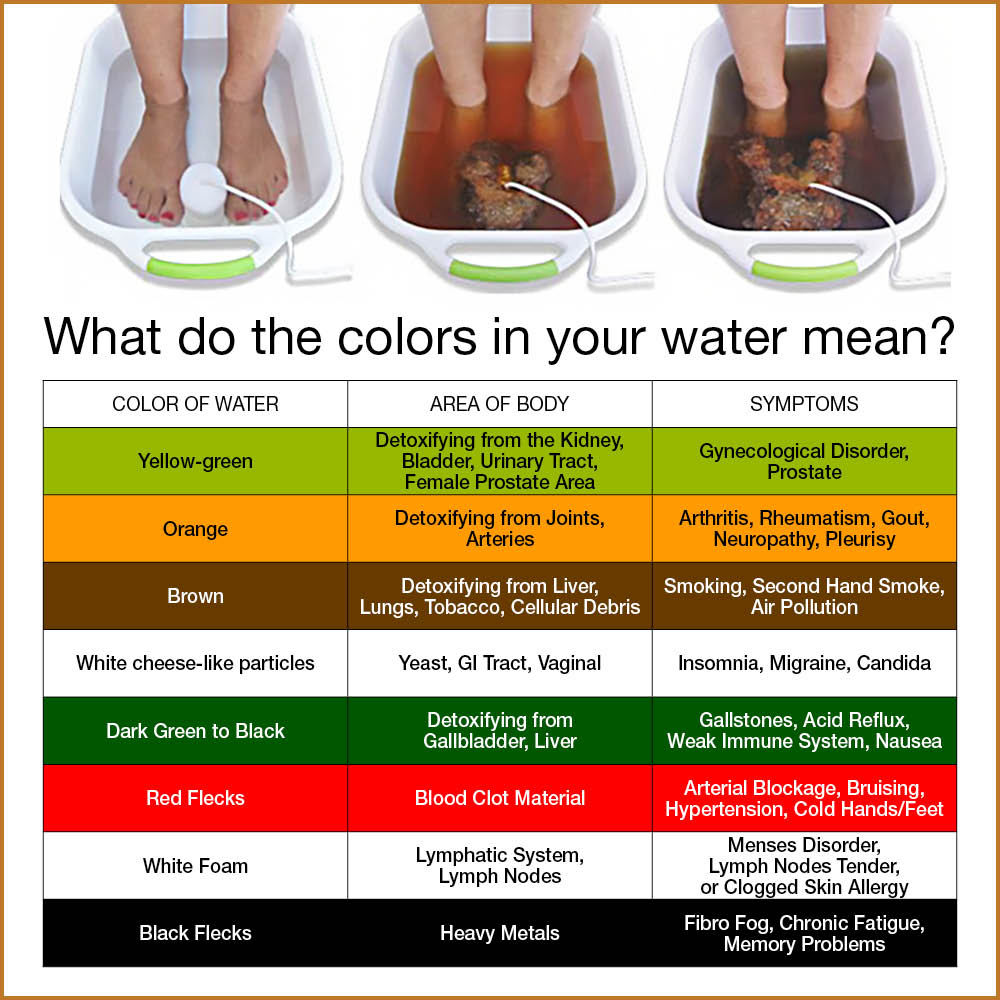 zen living ionic detoxification system instructions