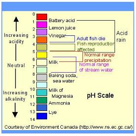 hydrion ph paper instructions