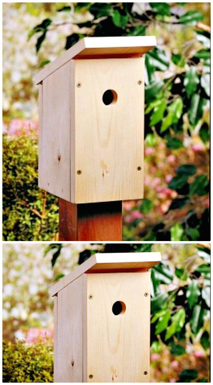 how to build a birdhouse instructions